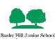 Bushy Hill Junior School, Guildford