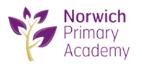Norwich Primary Academy, Norwich